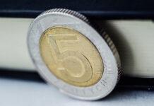 Pożyczka długoterminowa - weryfikacja kredytobiorcy